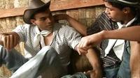 Latino Men Ass Licking Hard Sex